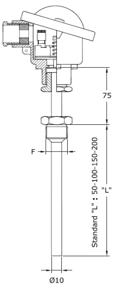 DO-NHIET-DO-RTD-PT100-TERMOTECH-2